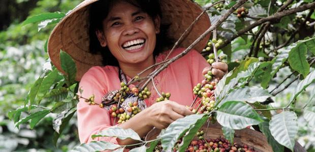 2016, année sourire - Java