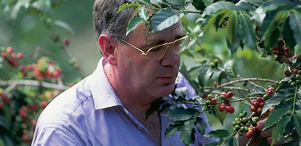 Inspection des branches de caféiers dans une plantation au Costa Rica