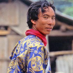 Une caravane tibétaine transportant des balots de thé