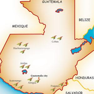 Les principales régions caféières du Guatemala