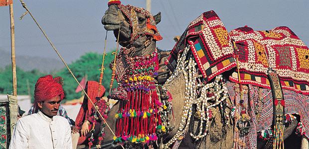 La foire aux chameaux de Puschkar