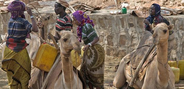 Les femmes Borana chargent leurs lourds bidons d'eau sur le dos des dromadaires