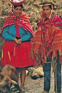 Un couple de bergers mène son cochon au marché