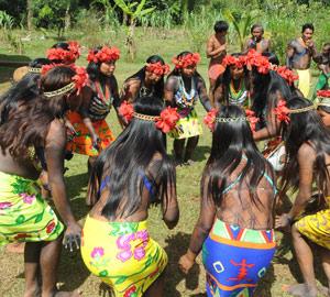 Tandis que les jeunes filles  Embera dansent.