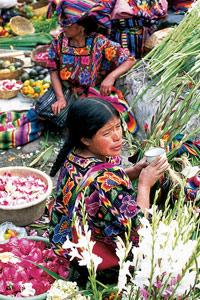Les Indiennes vendent des glaïeuls sur les marches de l'église Santo Tomas