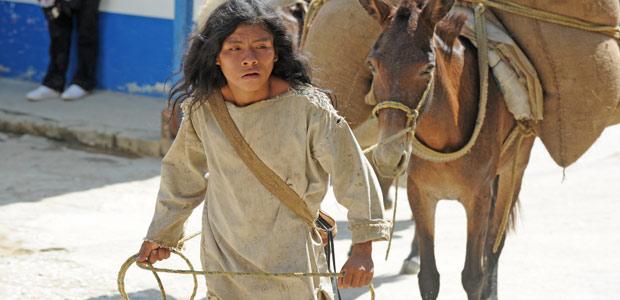 Un Indien Kogi arrive au village avec sa mule chargée de sacs de café