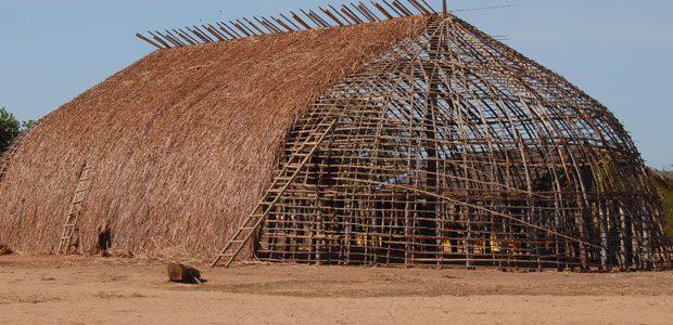 La grande hutte de Pirakuma est déshabillée de sa paille