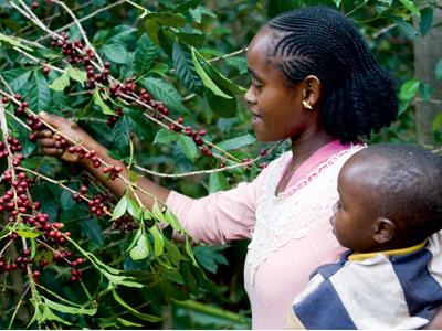 Maman et enfant à la cueillette
