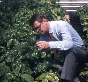 Paul dans une nurserie de café