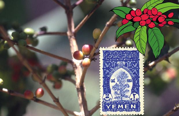 Le caféier à l'honneur sur les timbres du Yémen