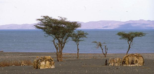 Dans le désert du nord Kenya, au sud-est du Lac Turkana