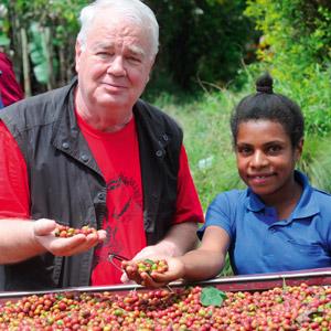 Dernières cerises de café de la récolte à Mount Hagen - Papouasie 2014