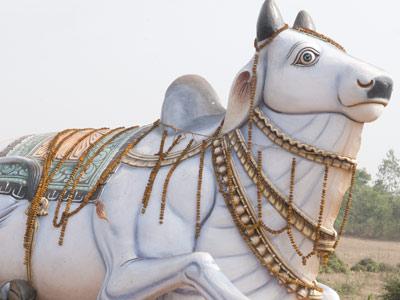 Statue de vache